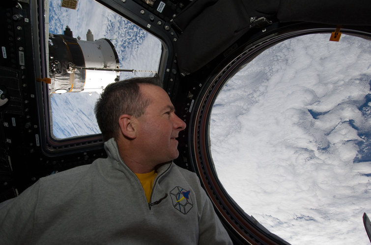 Stephen Robinson looks through a window in the Cupola