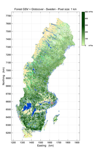 Forest growing stock volume map of Sweden