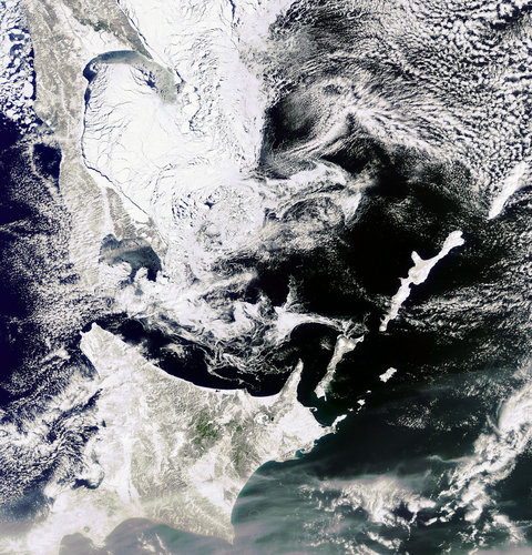 Sea ice in the Sea of Okhotsk