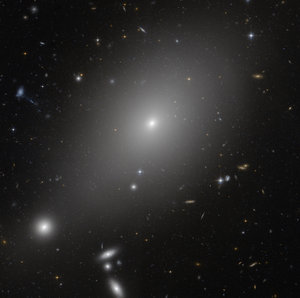The giant elliptical galaxy ESO 306-17