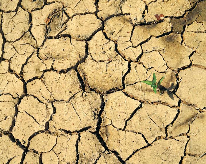 Perfect Dry Soil