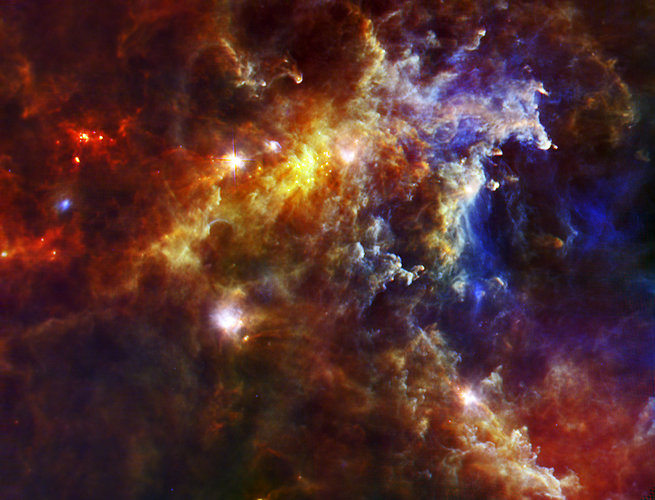 The Rosette molecular cloud, seen by Herschel