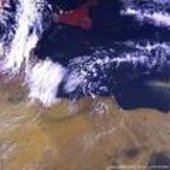 Vegetation image of Libya