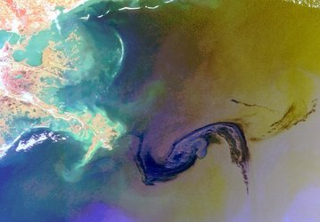 Gulf of Mexico oil spill seen from space