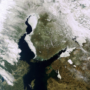 Baltic ice