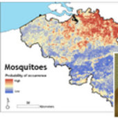 Vecmap - mapping the mosquito