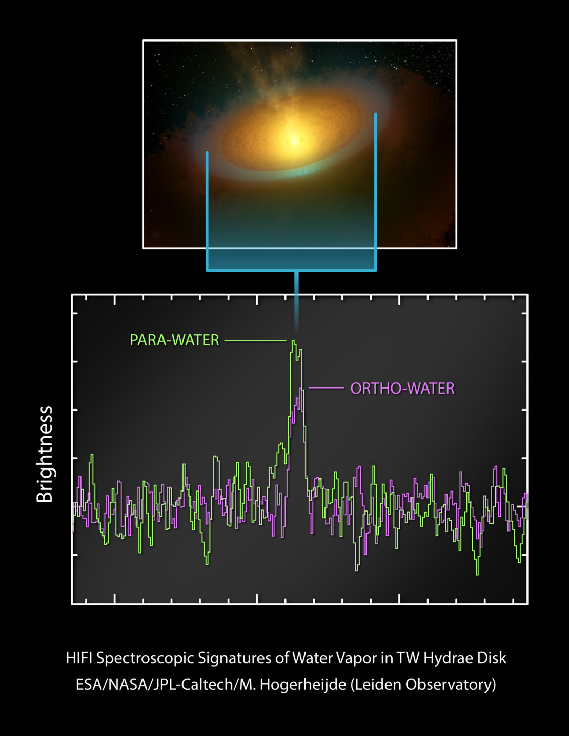Detection of water vapour in the spectrum of TW Hydrae's protoplanetary disc
