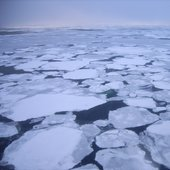 Sea ice in Laptev Sea