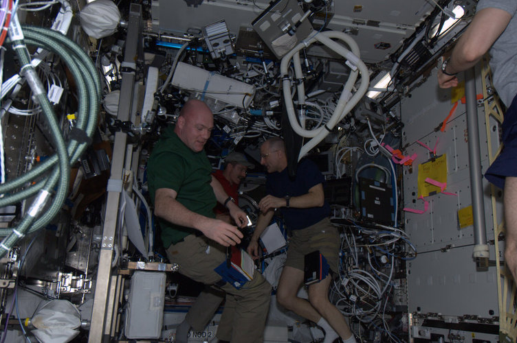 Expedition 30 crewmembers performing experiments