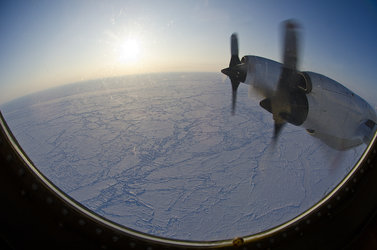 Arctic sea ice from the NASA P-3