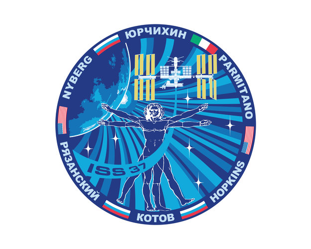 ISS Expedition 37 patch, 2013