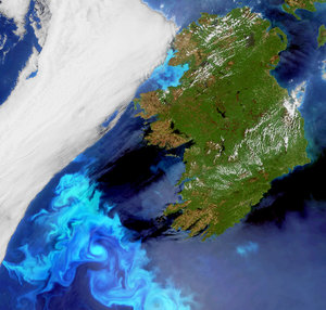 Algal bloom off Ireland