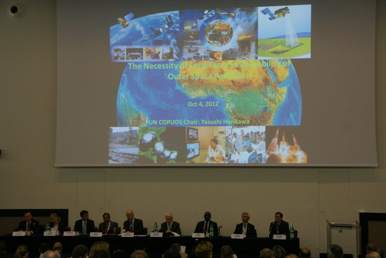 Sustainable capacity : building institutional capacity for sustainable development