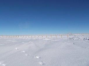 Η λευκή θέα στη βάση Concordia