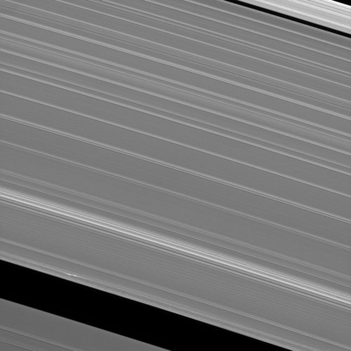 Propeller in Saturn's A-ring