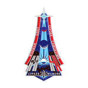 ISS Expedition 41 patch, 2014