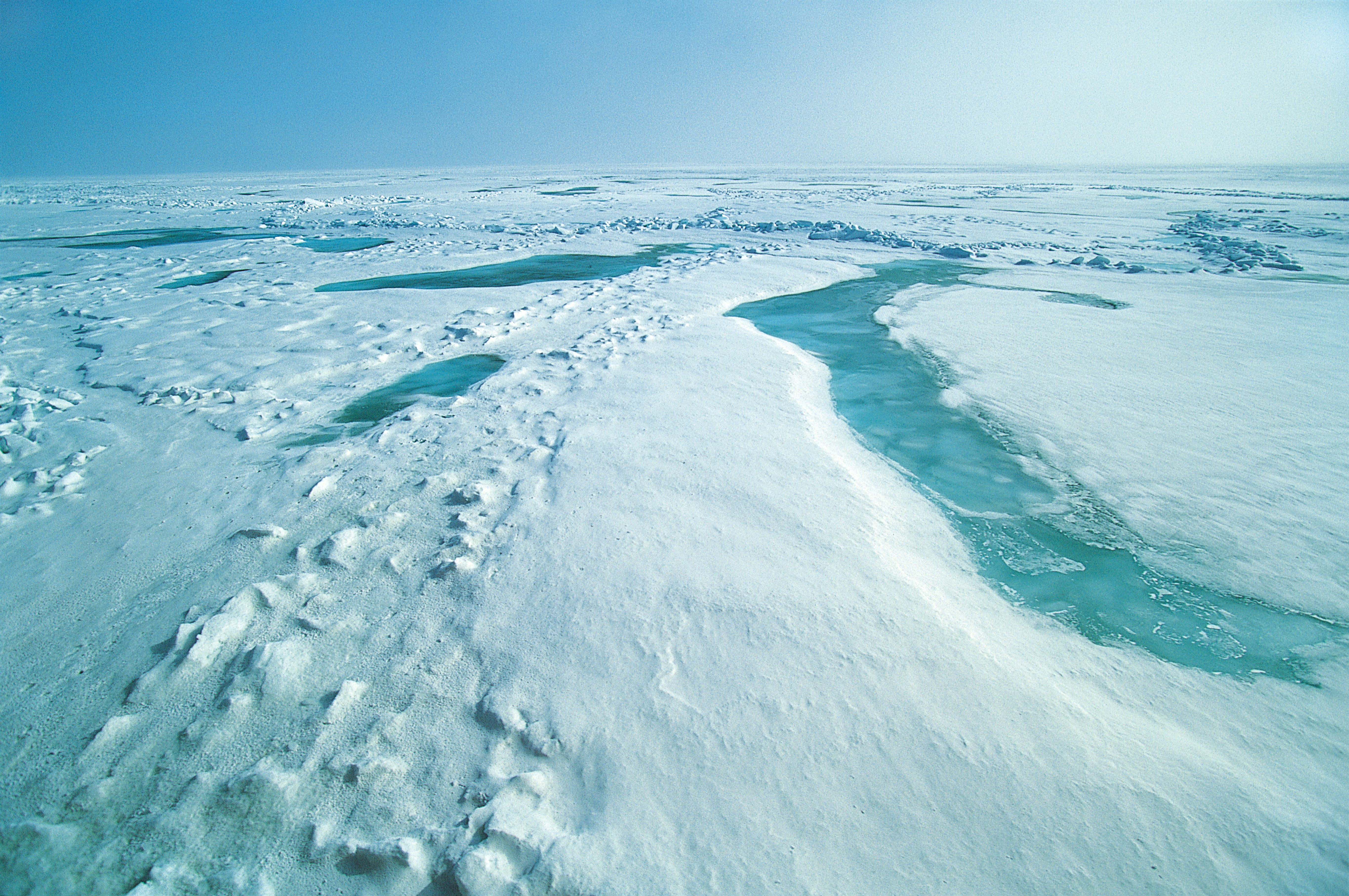 Space in Images - 2013 - 12 - Sea ice