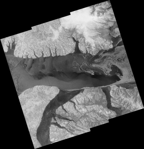 Simulated Sentinel-1 image