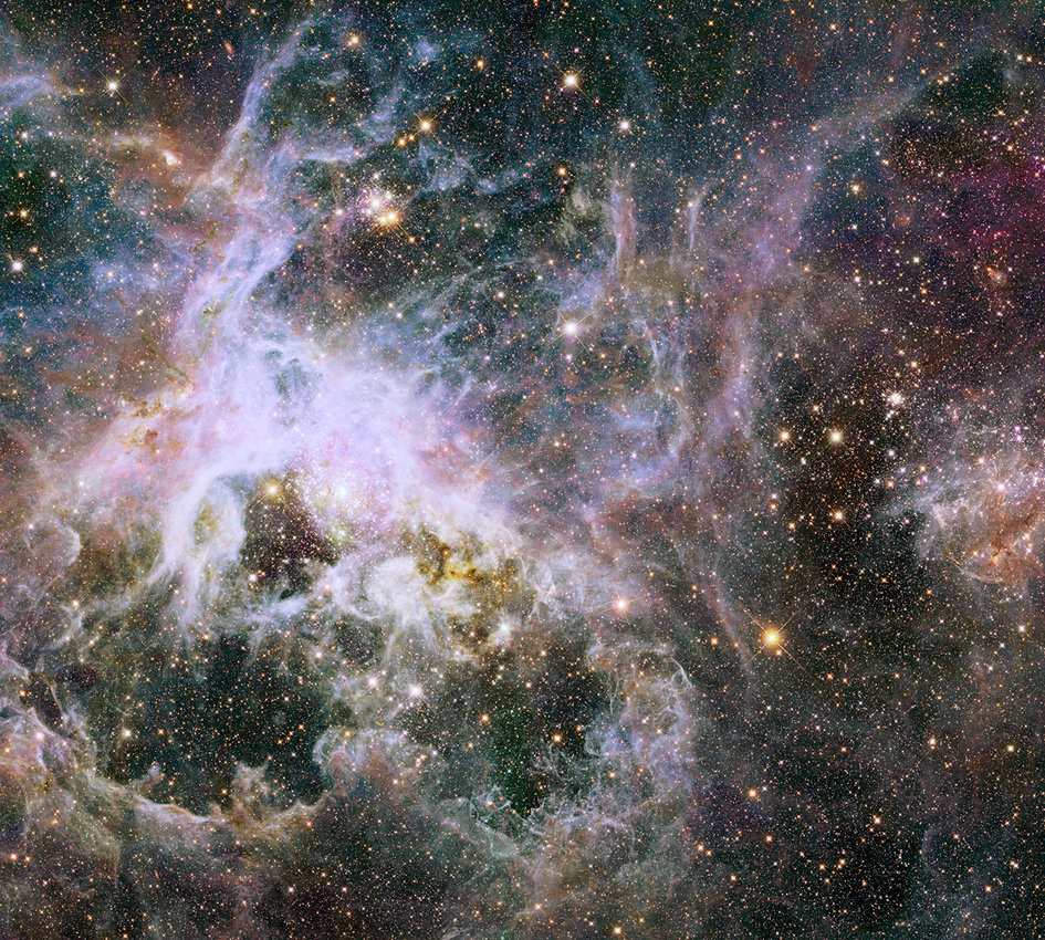 Unravelling the web of a cosmic creeply-crawly