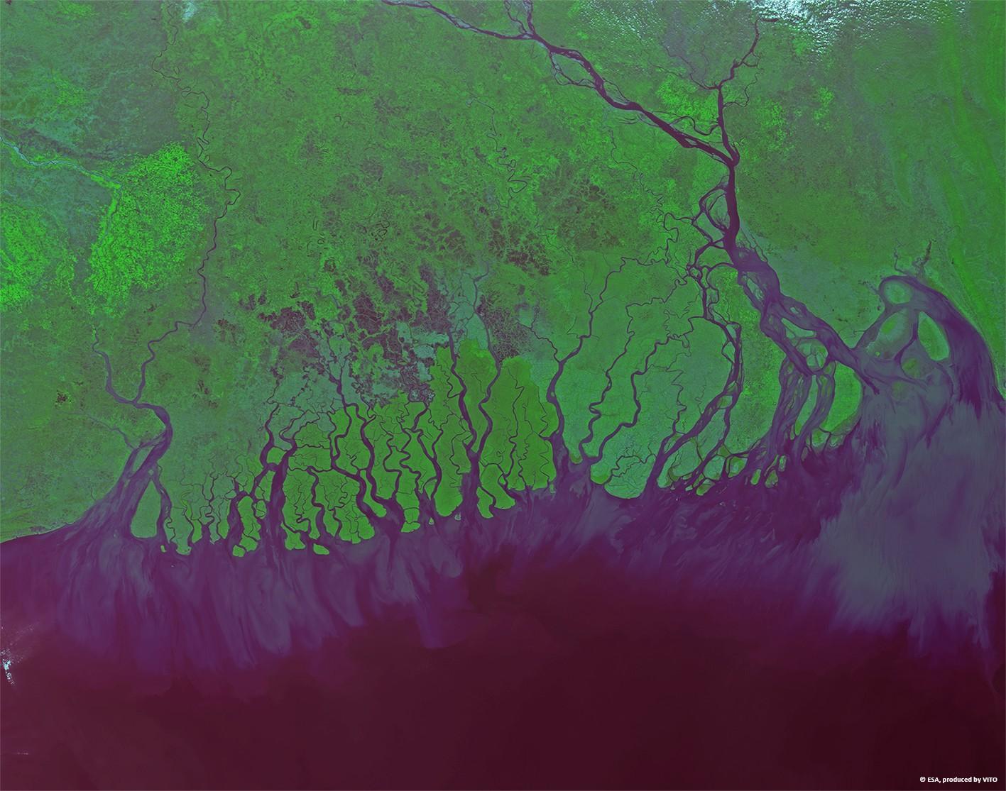 http://www.esa.int/var/esa/storage/images/esa_multimedia/images/2014/02/mouth_of_ganges_at_100-m_resolution/14280141-2-eng-GB/Mouth_of_Ganges_at_100-m_resolution.jpg