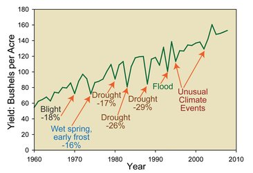 Effect of drought on corn yields