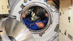 [1/11] ESA astronaut Alexander Gerst enters the ISS