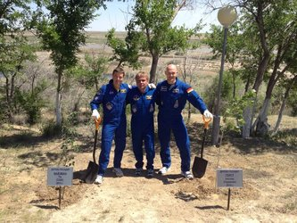 Expedition 40/41 tree planting