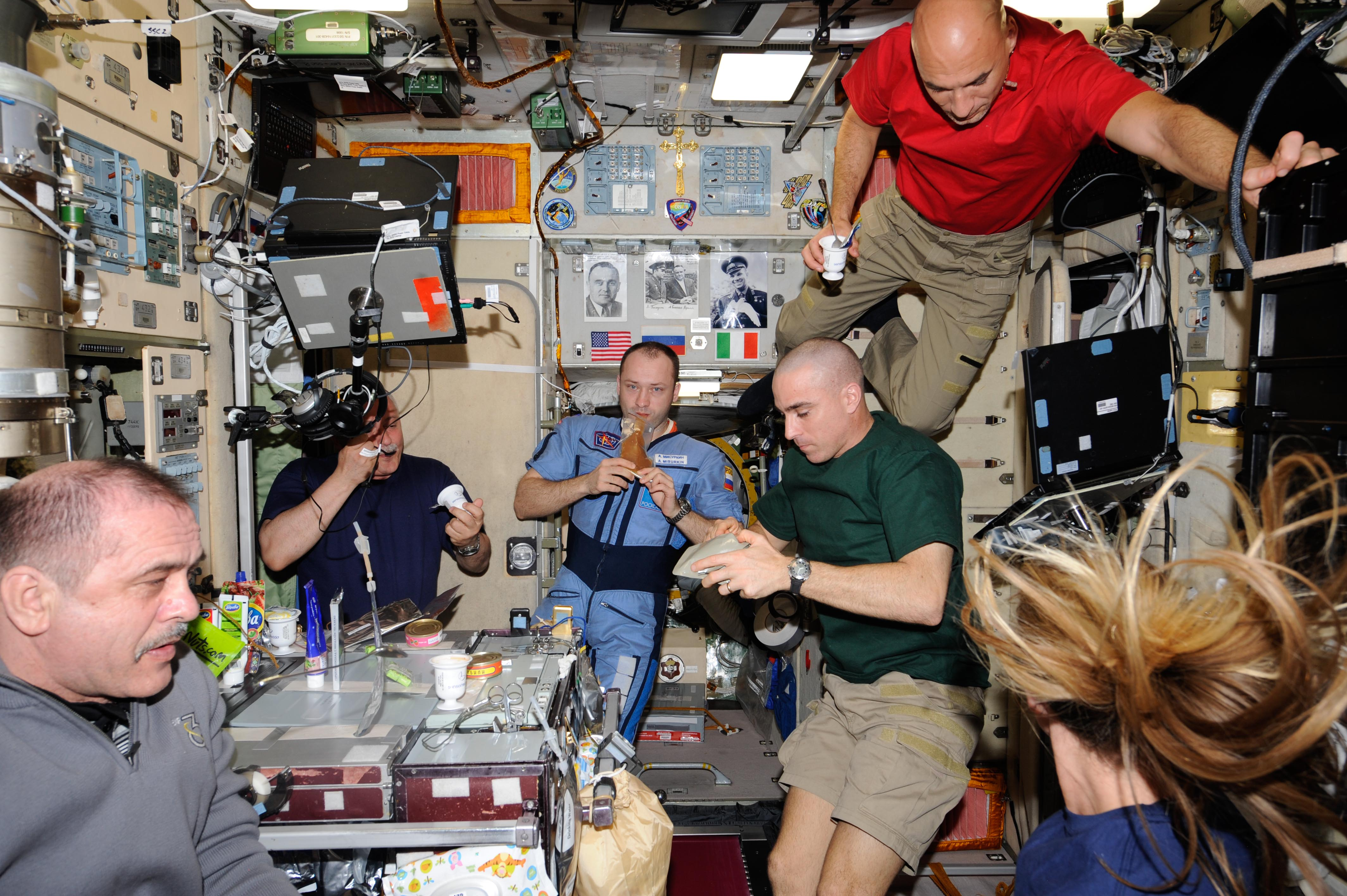 astronaut crews of the international space station role - photo #8
