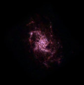 Nearby M33 galaxy blossoming with star birth