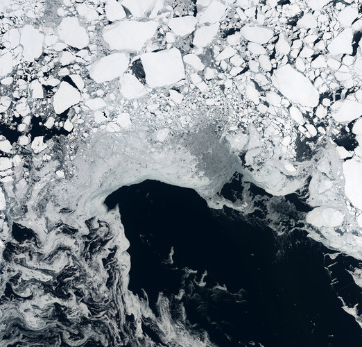 Sea ice, Arctic Ocean