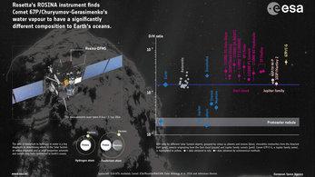 First measurements of comet's water ratio