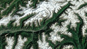 Erdbeobachtungsbild der Woche: Der Gro�e Aletsch-Gletscher