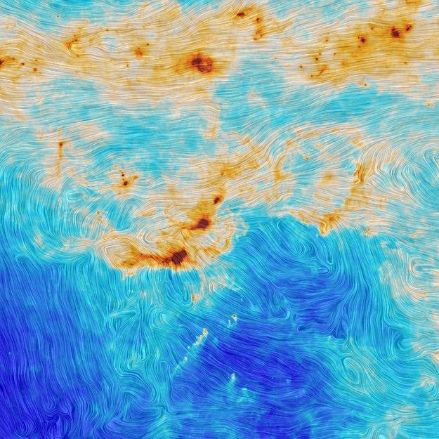 Formación Estelar y Turbulencia Magnética en la Nube Molecular de Orión