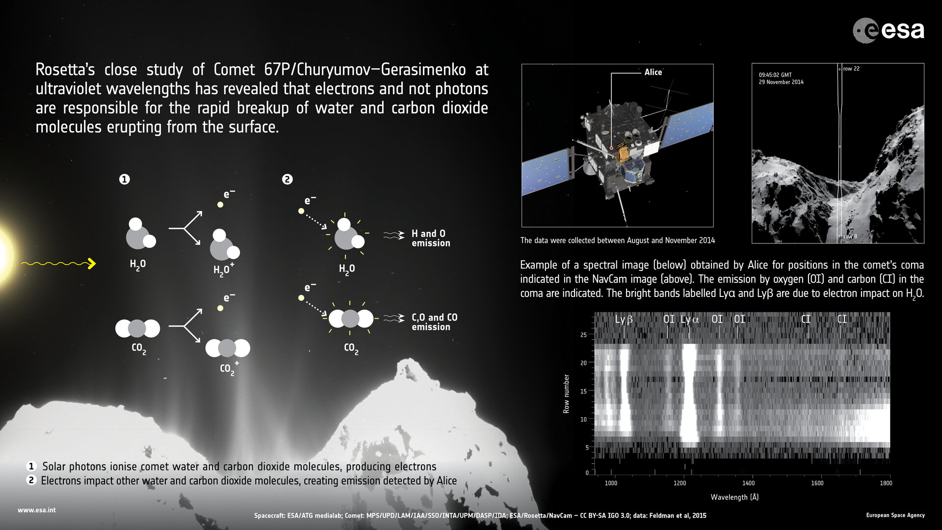 Rosetta uncovers processes at work in comet's coma