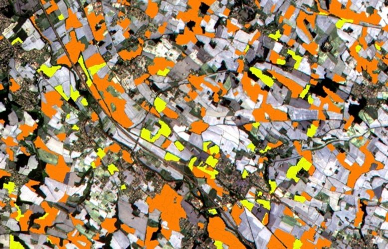 Sentinel-2 for agriculture