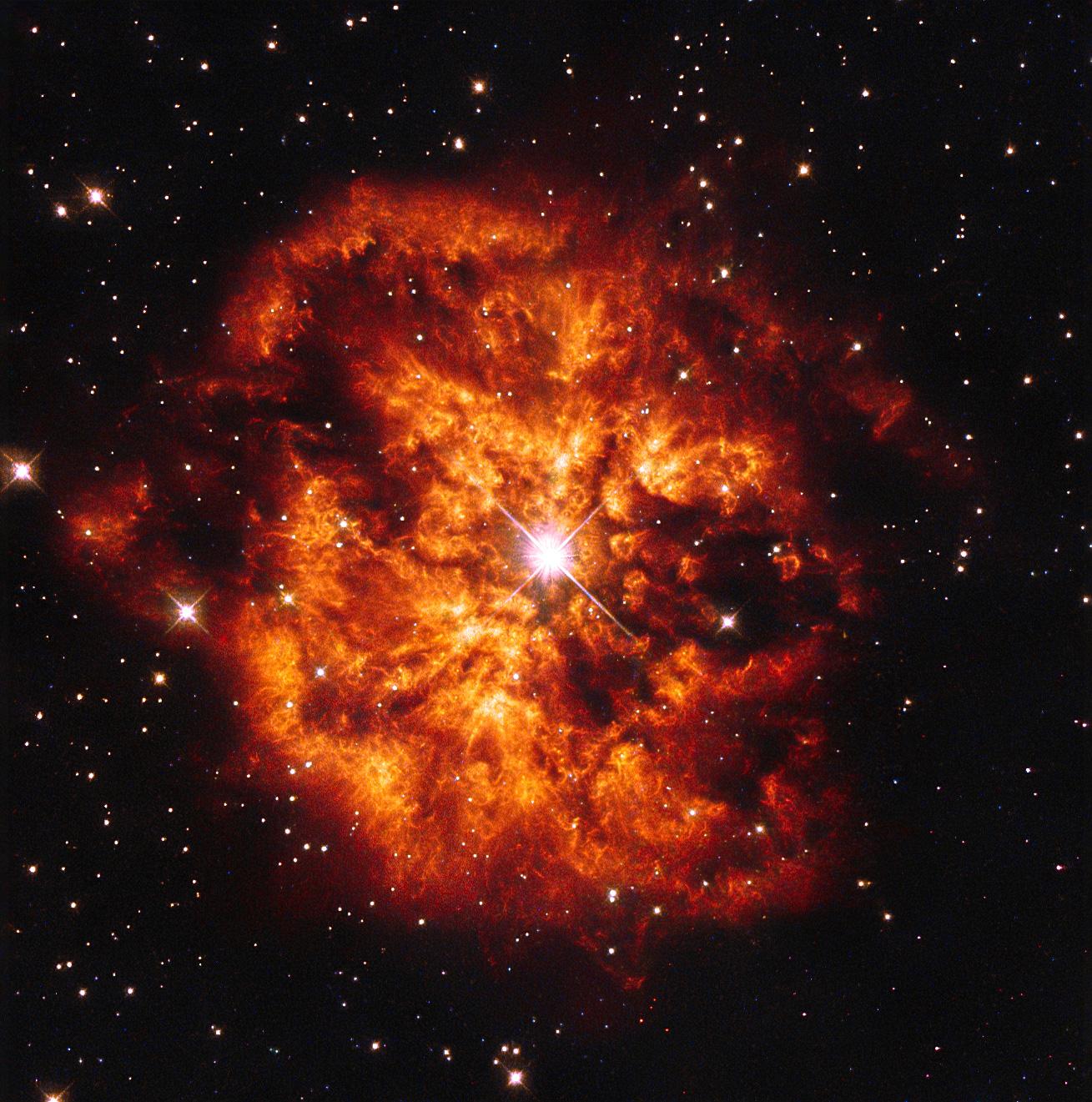 Mgławica M1-67 otaczająca gwiazdę WR 124
