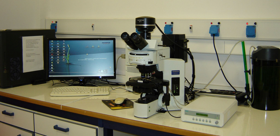 Microscope set-up