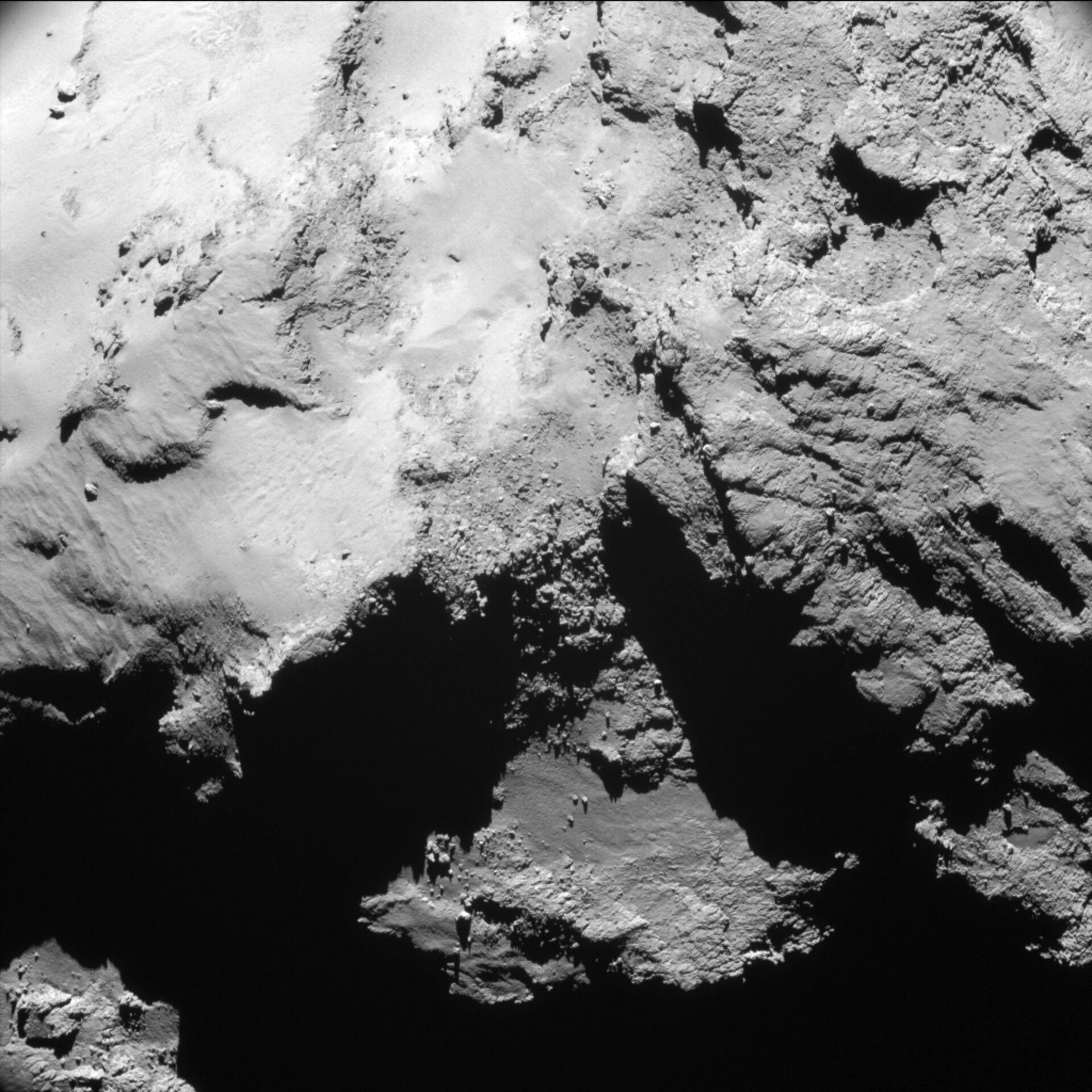 Year at a comet, February 2015