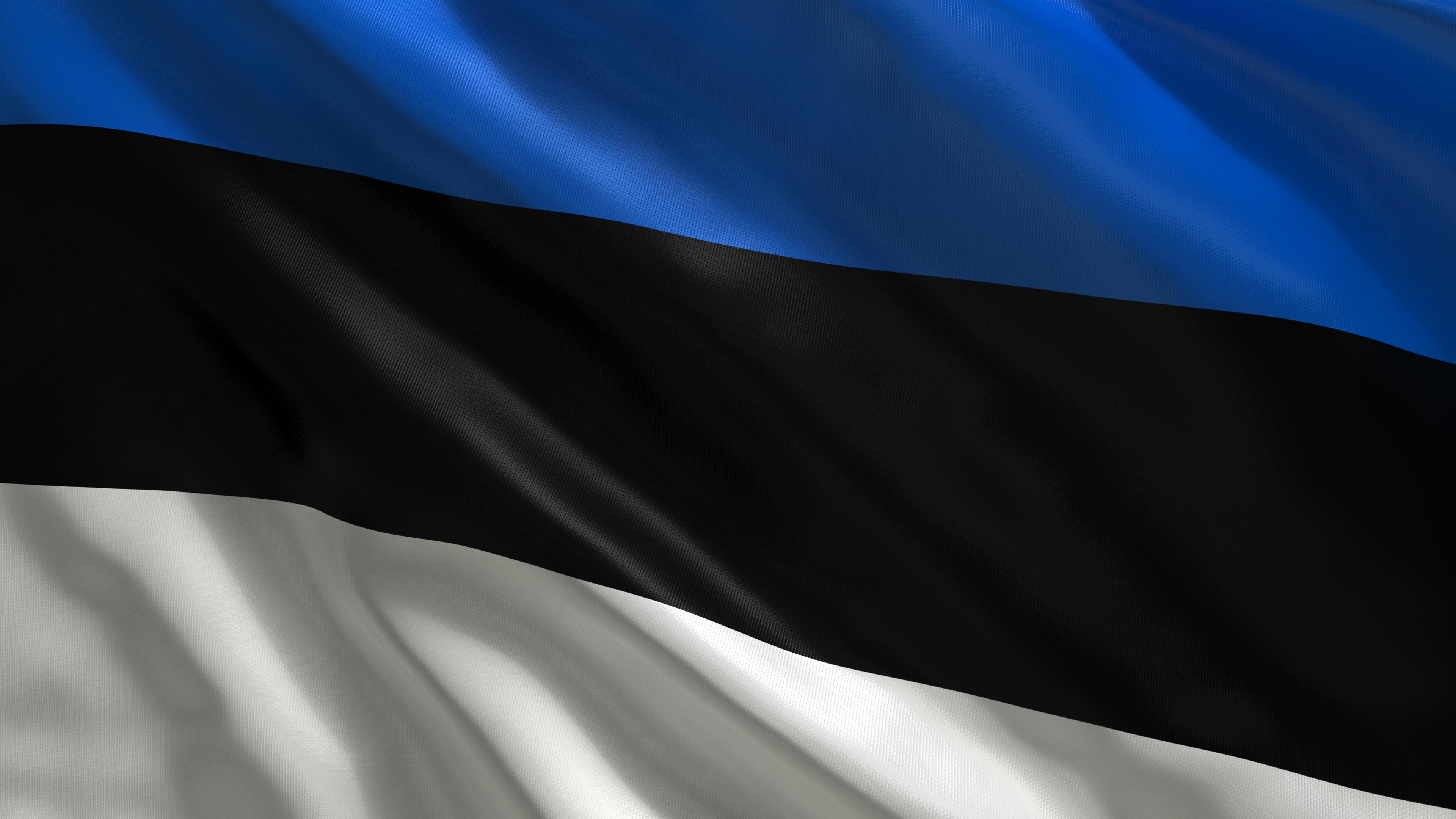 Αποτέλεσμα εικόνας για estonia flag