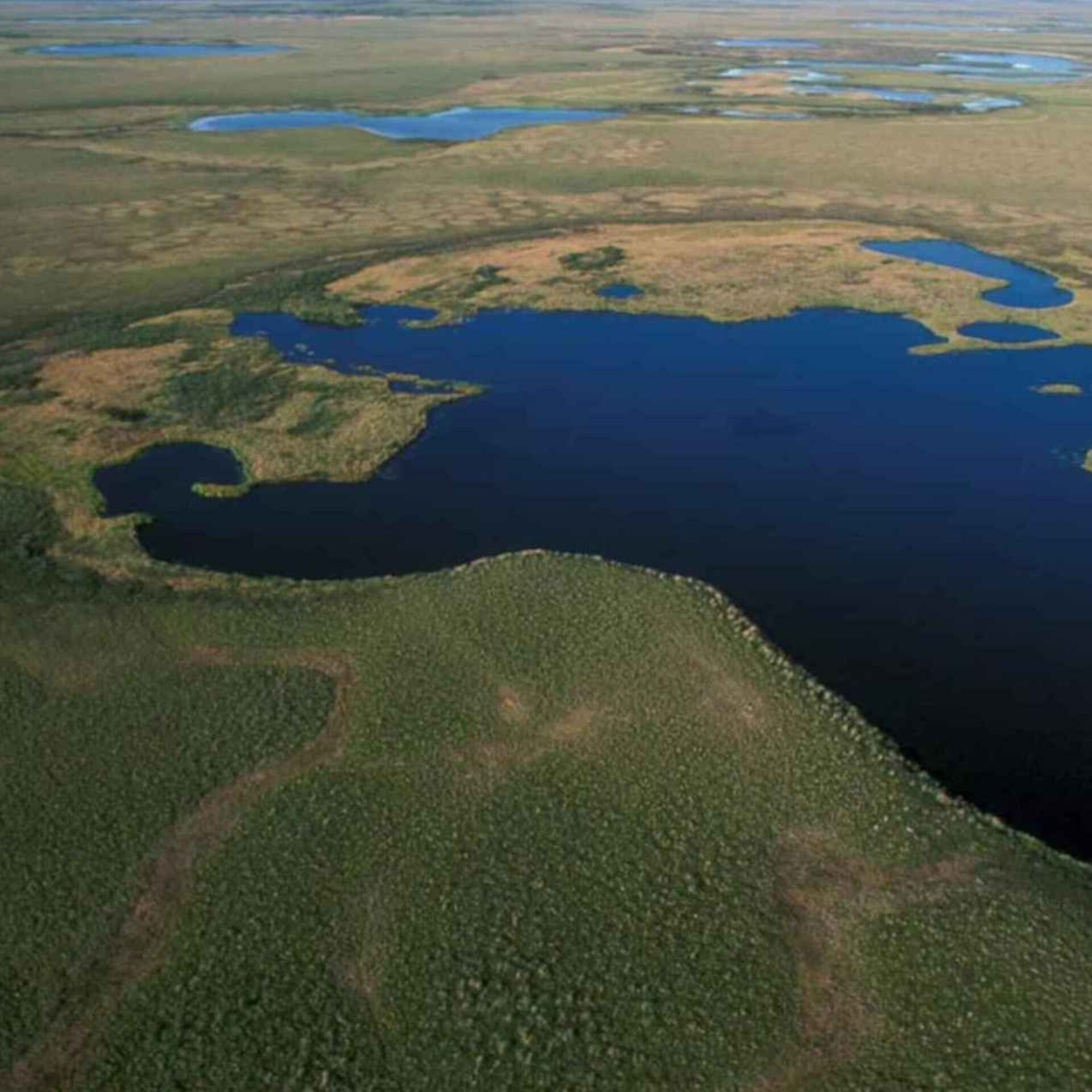 Aerial view of National Park Wetlands