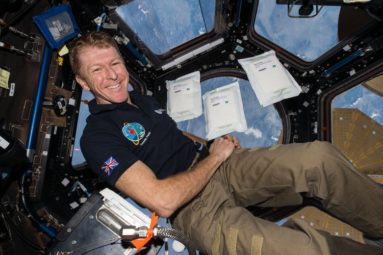 Timothy Peake with space seeds in the cupola