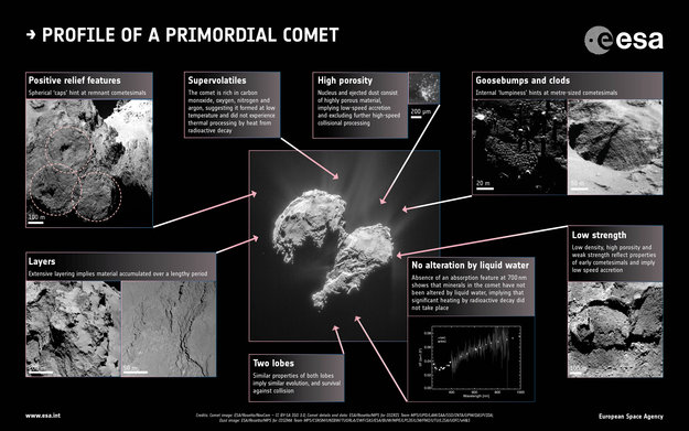 El perfil de un cometa primigenio