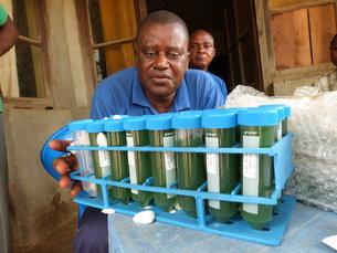 Una alga espacial para luchar contra la malnutrición