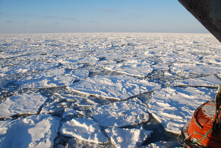 Thin sea-ice