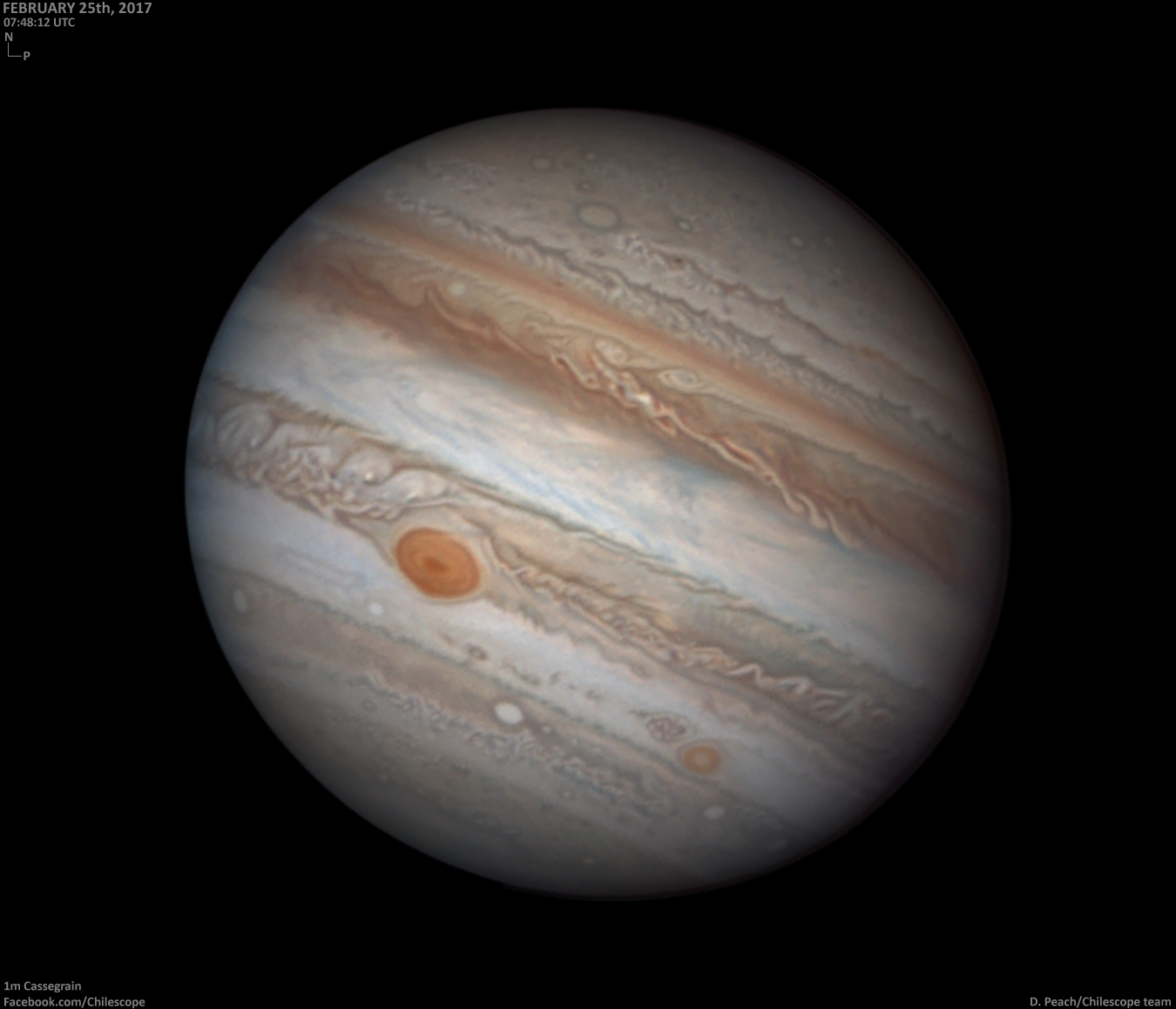 Space in Images - 2017 - 04 - Jupiter on 25 February 2017