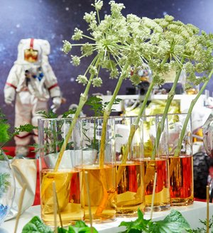 Agriculture in space