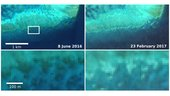 sentinel 2 captures coral bleaching of great barrier reef