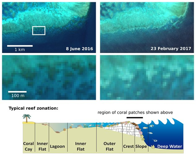 Sentinel-2 captures coral bleaching