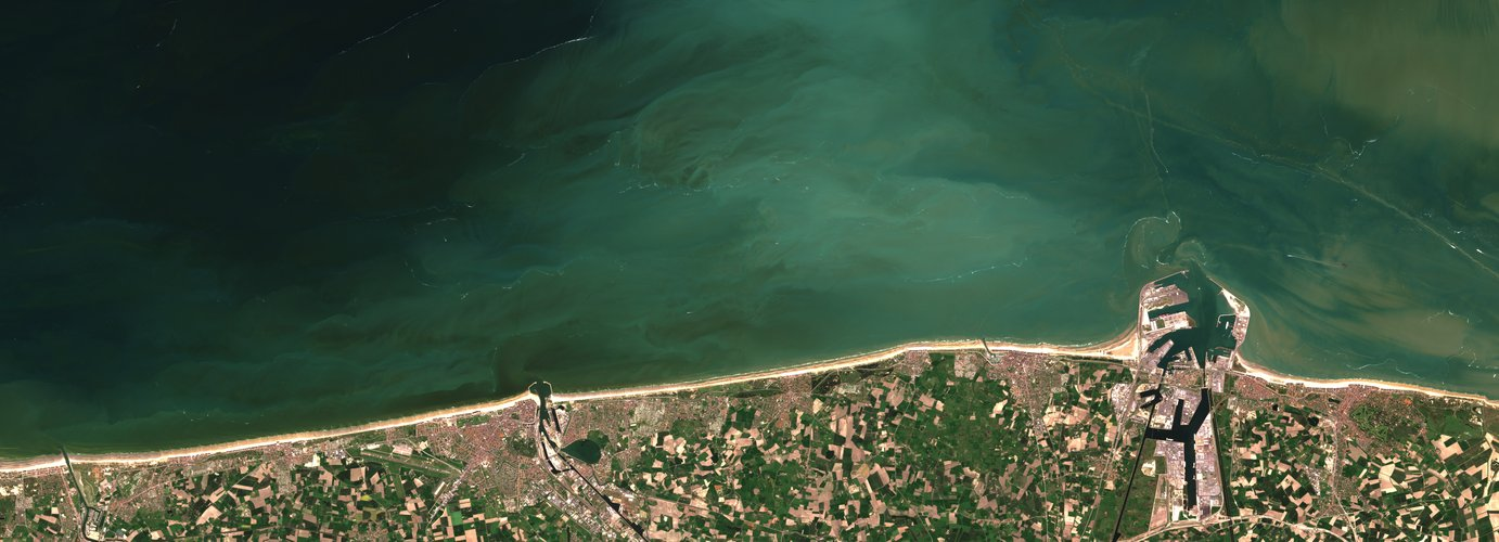 Algal bloom off Belgian coast