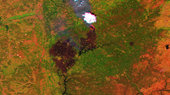 Proba-V images Portuguese forest fire